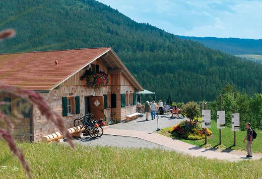 Panoramastüble Baiersbronn-Schwarzenberg